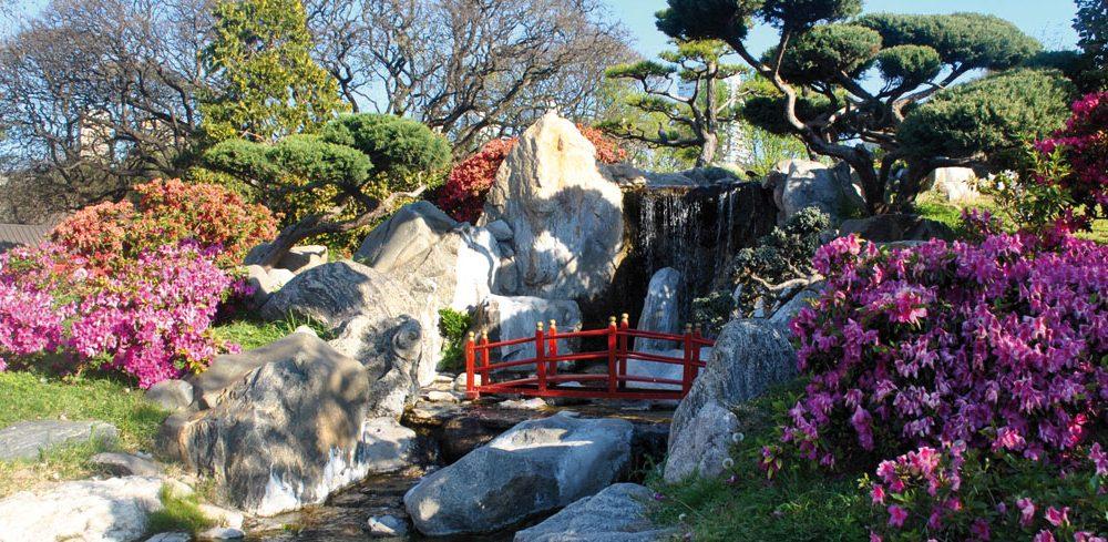 Turismo en la ciudad de buenos aires el jard n japon s for Plantas jardin japones