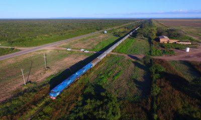Trenes (4)